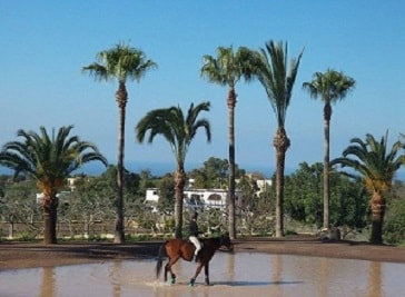 Horse Riding Paphos- Eagle Mountain Ranch